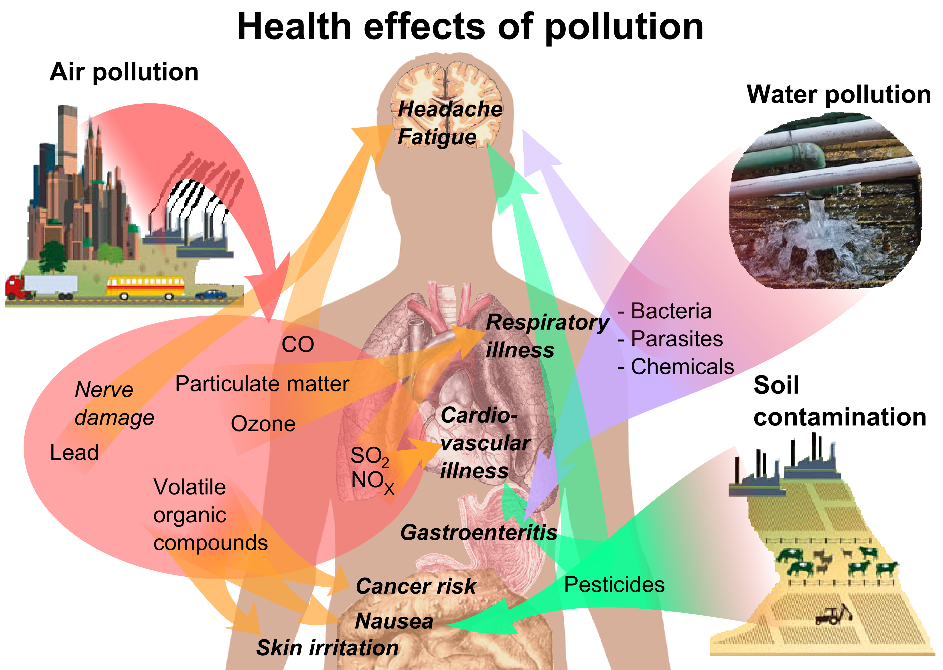 Health_effects_of_pollution